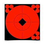 "Birchwood Casey Self-Adhesive Target 6"" Spots 10 Pack"