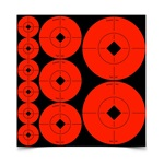 Birchwood Casey Target Spots Assortment 10 Pack