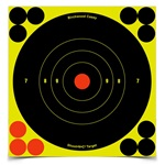 "Birchwood Casey Shoot-N-C 6"" Round Target 60 Pack"